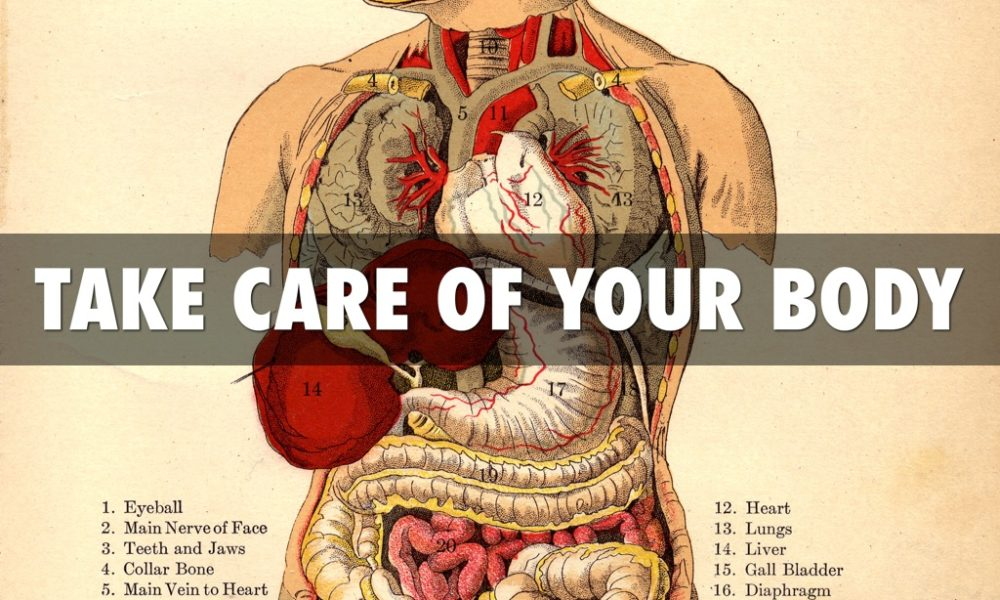 Powerful Ways To Take Care Of Your Internal Organs The Culture