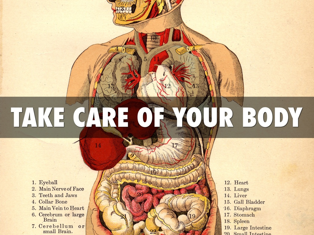 Powerful Ways to Take Care of Your Internal Organs » The Culture ...